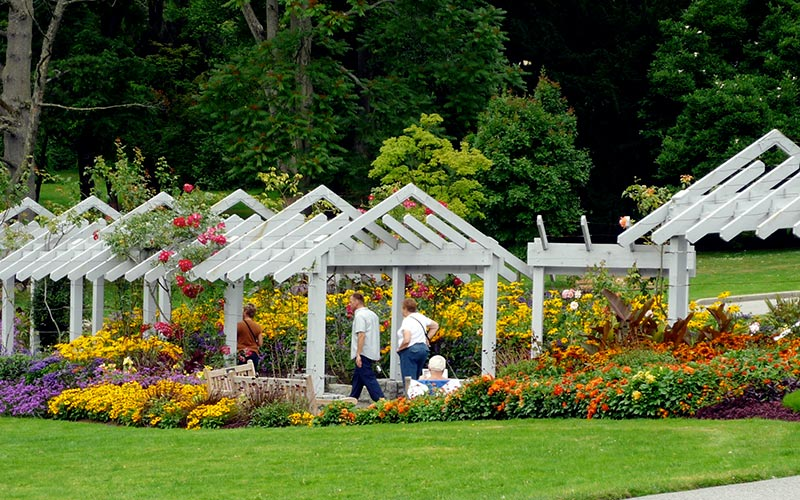 More than 30 varieties of roses decorate the arbor and grounds of the Stanley Park Rose Garden.